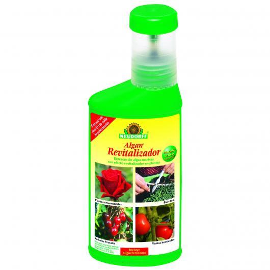 Algan revitalisant 250 ml