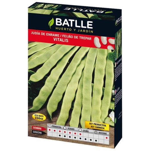 Graines de haricot à rames Vitalis 100 g