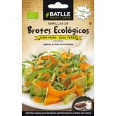 Sementes de soja verde para germinar Eco.