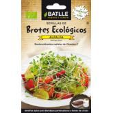 Sementes de alfalfa para germinar Eco