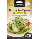 Sementes de cebola para germinar Eco