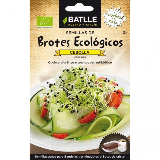 Semi germinati Cipolla Eco
