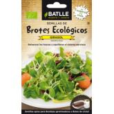 Sementes de girassol para germinar Eco