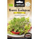Sementes de rúcula para germinar Eco