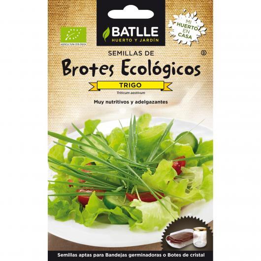 Semi germinati Grano Eco