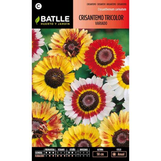 Semillas de  Crisantemo Tricolor variado