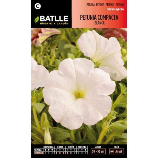 Semi di Petunia compatta bianca