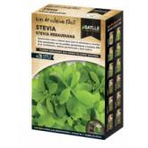 Kit de culture Stévia rebaudiana
