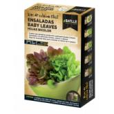 Kit insalata baby leaves Foglie Bicolor