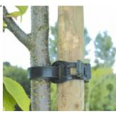 Abrazadera árbol 45 cm