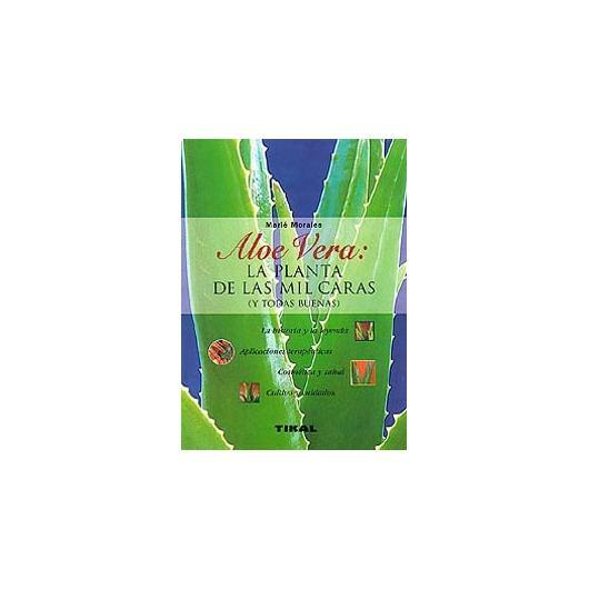 Aloe Vera: la planta de las mil caras (y todas buenas)