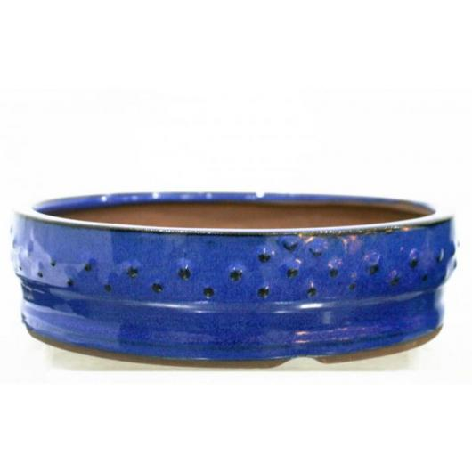 Pot à bonsaï Basic rond bleu 15 cm