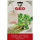 Sementes de rabanete para germinar, bavicchi GEO 30 gr