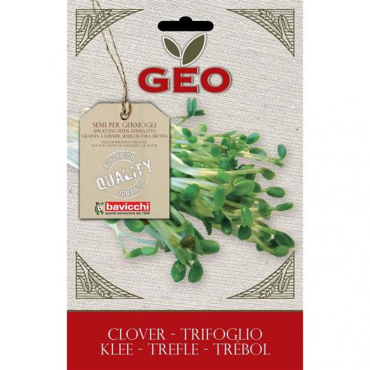 Graines de trèfle à germer, bavicchi GEO 50 g