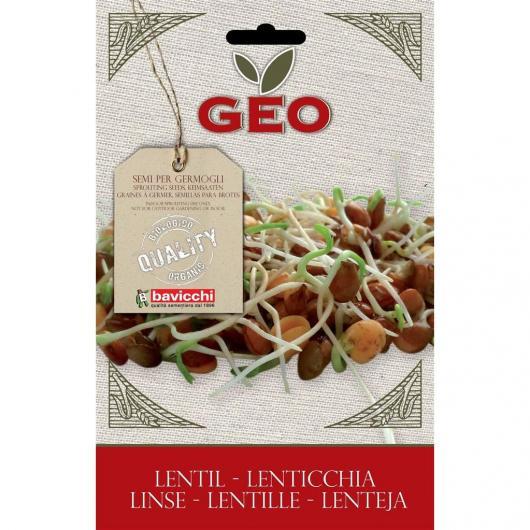Graines de lentille à germer, bavicchi GEO 50 g