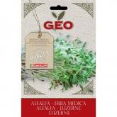 Sementes de alfalfa para germinar, bavicchi Geo 40 gr