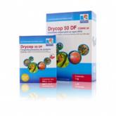 Fungicida rame Dycrop 50 DF Vithal Garden 60gr