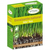 Enraizante natural Stilo Vithal Garden 50 ml