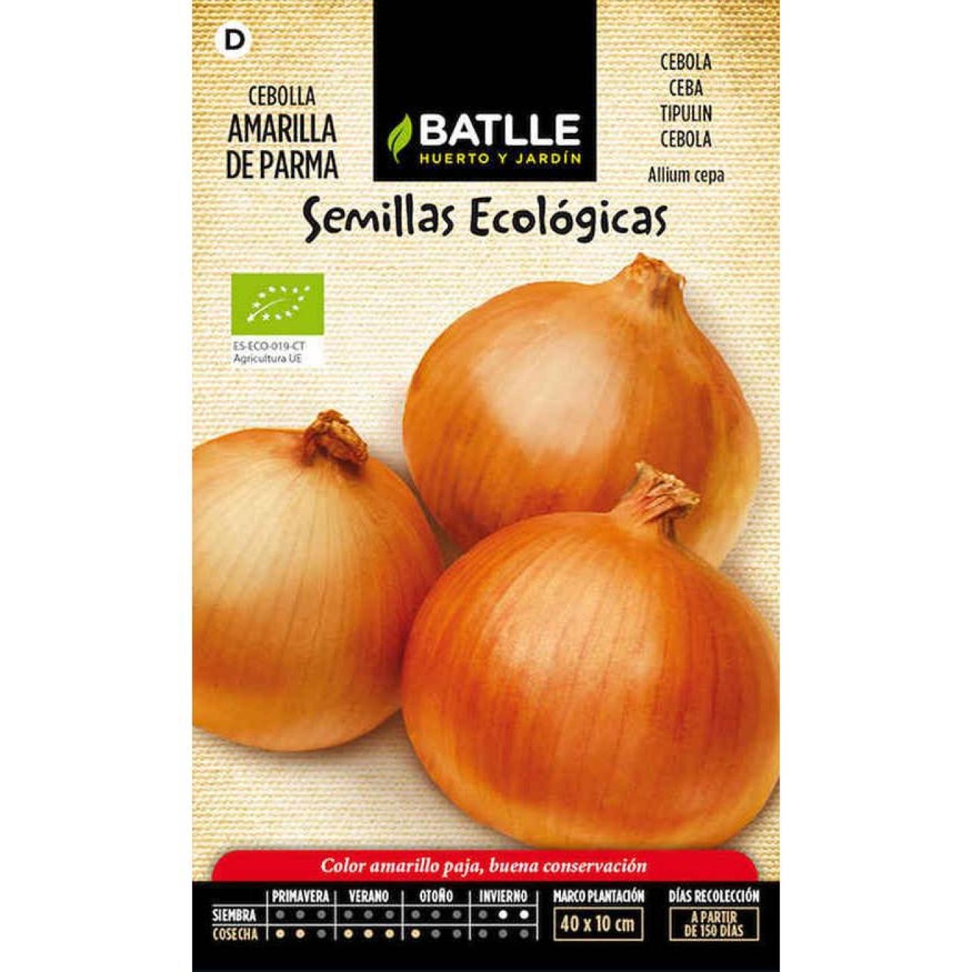 Semillas ecol gicas de cebolla amarilla de parma por 1 60 for Asociacion de cultivos tomate