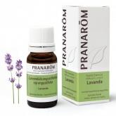 Lavanda Pranarôm, 10 ml