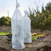 Telo per la crescita dei pomodori Catral