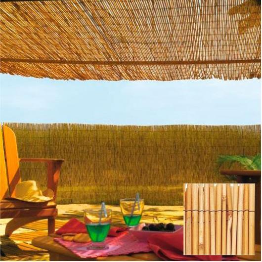 Bambú Chino Reedcane