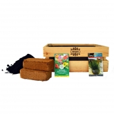 Kit de cultivo de Erva para Gatos, Vergea