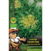 Sementes ecológicas de Escarola Loura de Corcação Cheio  (folha lisa)
