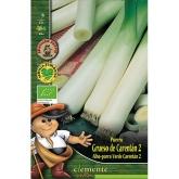 Sementes biológicas de Alho-Poroo Verde de Carentán 2
