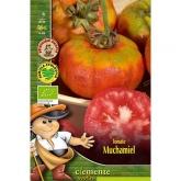 Sementes biológicas de Tomate Muchamiel