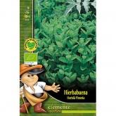 Sementes biológicas de Hortelã-Pimenta