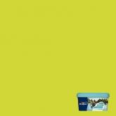 Colores del mundo Caribe VERDE LIMA 2.5 L