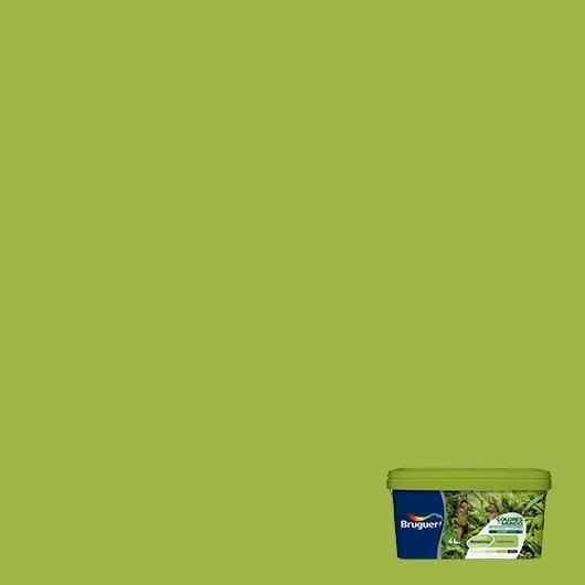 Colores del mundo amazonas verde natural 4 l por 24 50 - Colores del mundo de bruguer ...