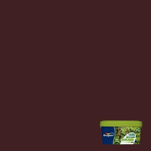 Couleurs du monde Amazone MARRON TROPIQUE 2,5 L