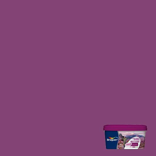 Couleurs du monde Japon VIOLET naturel 4 L