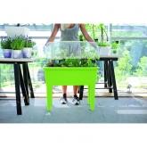 Mesa de cultivo ESPA verde