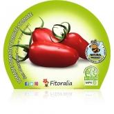 Muda biológica de Tomate San MArzano, vaso 10,5 cm de diâmetro