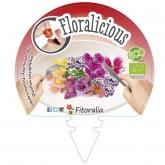 Muda biológica de Flores Comestíveis I Pack 6 un. 54x43 mm