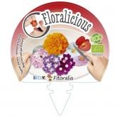 Muda biológica de Flores Comestíveis II Pack 6 un. 54x43 mm
