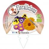 Muda biológica de Flores Comestíveis III Pack 6 un. 54x43 mm
