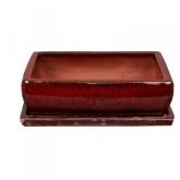 Vaso para bonsai Kofun rectangular vermelho + Prato