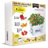 Kit de autocultivo Seed Box Pimentos Picantes
