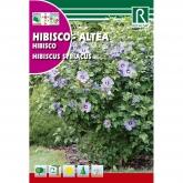 Sementes de Hibisco Hibiscus syriacus