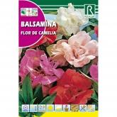 Sementes de Flor de Camélia, variadas