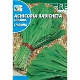 Sementes de Chicória radicheta spadona