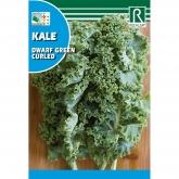 Sementes de Couve Kale dwarf green curled