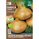 Sementes de Cebola Stuttgarter
