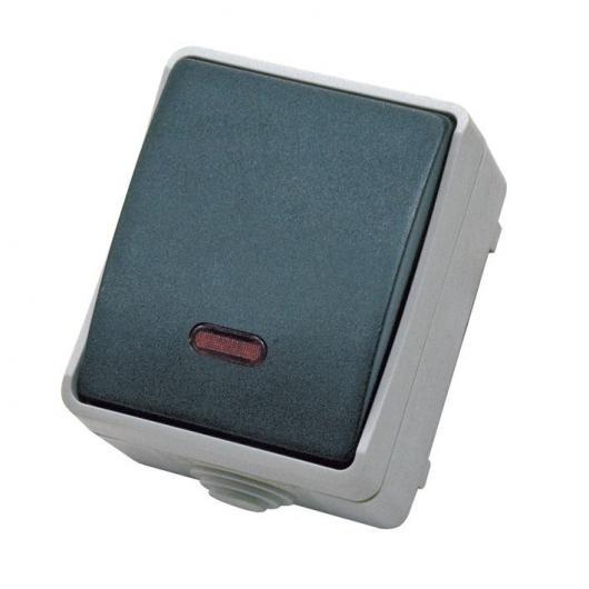 Interrupteur boîtier étanche IP44 gris Duolec