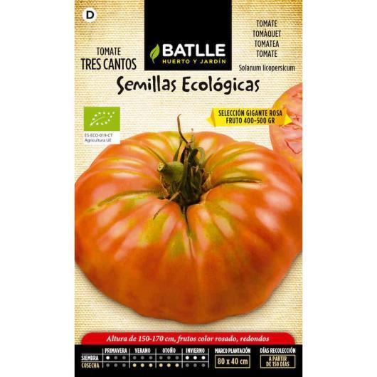 Semillas ecológicas de  Tomate tres Cantos gigante rosa