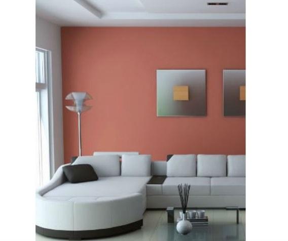 Cmo elegir y combinar los colores de nuestra casa Planeta Huerto